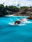 有生长在峭壁的棕榈的蓝色盐水湖 免版税图库摄影