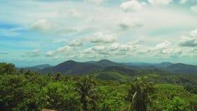 有生长在热带海岛上的大山的棕榈树和密集的金合欢树的美丽的豪华的绿色密林晴朗的 股票视频