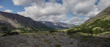 有用地衣和岩石的山寒带草原盖的青苔, Hibi 免版税库存照片