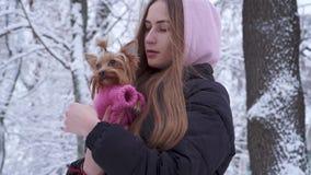 有用敞篷盖的长发的画象逗人喜爱的青少年的女孩拥抱在羊毛毛线衣藏品穿戴的约克夏狗 股票视频