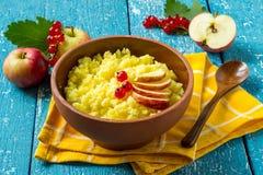 有用的小米粥用苹果和红浆果 免版税库存照片