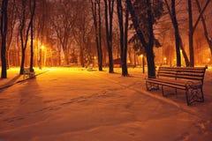 有用雪盖的长凳的冬天公园在晚上 免版税库存图片