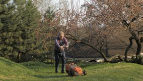 有电割草机的,草坪割成人人 整理庭院的花匠 股票视频