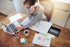 有电子商务的成功的女实业家 免版税库存照片