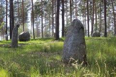 有疏散神奇石头的绿色森林 库存图片