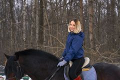 有白发的一个女孩学会骑马 女孩最近开始实践马术 女孩害怕ri 免版税图库摄影
