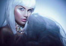 有白发的秀丽妇女和冬天称呼构成 高档时尚模型女孩画象 库存图片