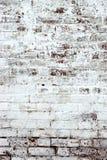 有白涂料Backround纹理的老红砖墙壁 库存图片