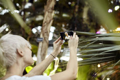 有白肤金发的短发的少妇做selfie 拍照片使用电话照相机在一个绿色公园 集中于电话 库存图片
