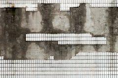 有白色瓦片的老墙壁 免版税库存照片