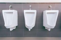 有白色瓷尿壶的男盥洗室在线 与瓦片的现代干净的公共厕所 免版税图库摄影