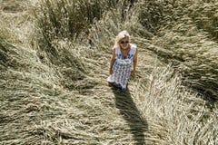 有白色,蓝色礼服的性感的妇女审阅黑麦领域 免版税库存照片