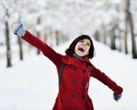 有的乐趣场面冬天 免版税库存图片