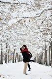 有的乐趣场面冬天 库存图片