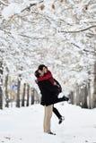 有的乐趣场面冬天 库存照片