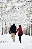 有的乐趣场面冬天 图库摄影
