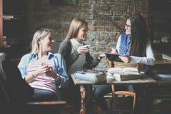 有的咖啡馆的学生女孩滑稽的交谈 免版税图库摄影