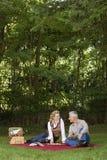 有的夫妇野餐 免版税库存图片