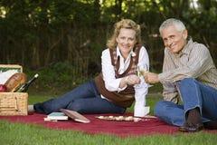 有的夫妇野餐 库存照片