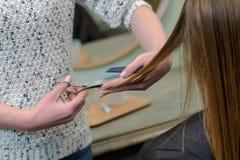 有的妇女头发被剪在美发师 免版税库存图片