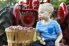有的孩子乐趣苹果采摘和开会在一红色古色古香的trac 免版税库存照片