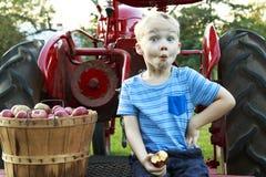 有的孩子乐趣苹果采摘和开会在一红色古色古香的trac 库存图片