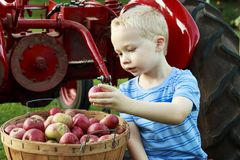 有的孩子乐趣苹果采摘和开会在一红色古色古香的trac 免版税库存图片