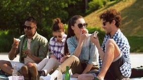 有的朋友远足和在湖码头的野餐 股票录像