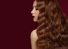有的美丽的红头发人女孩完全卷曲头发和经典构成 秀丽表面 图库摄影