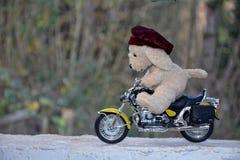有盖帽的狗软的玩具坐摩托车 免版税图库摄影