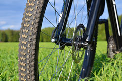 有盘式制动器的登山车轮子 库存图片