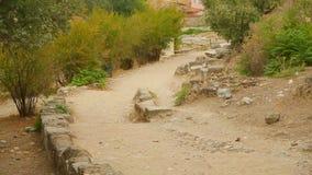 有石建筑遗骸的老路,考古学挖掘站点 影视素材