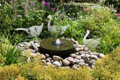 从有石头和植物的一个喷泉关闭在庭院。 库存图片