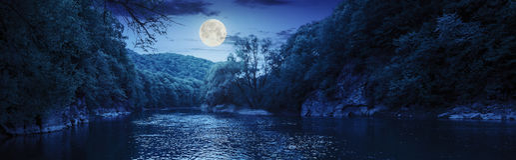 有石头的森林河在岸在晚上 库存照片