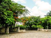 有石头的热带庭院 库存照片