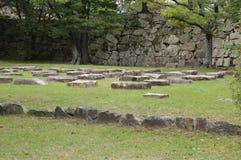 有石头的草原 库存照片