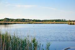 有碘和矿物的治疗湖在狂放的干草原中间 免版税库存照片