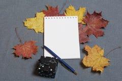 有礼物的一个黑匣子 有一个开放笔记薄和笔 下落的秋叶黄色和红色驱散表面上 免版税图库摄影