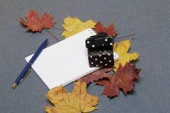 有礼物的一个黑匣子 有一个开放笔记薄和笔 下落的秋叶黄色和红色驱散表面上 免版税库存图片