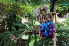 有礼物的两骨骼在手边在树下 免版税库存图片