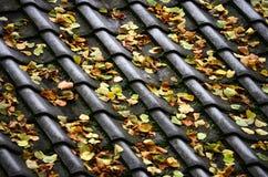 有秋叶的一个铺磁砖的屋顶 免版税库存图片