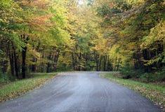 有秋叶的乡下公路 库存图片