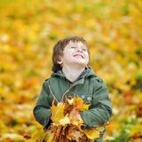 有秋叶的愉快的逗人喜爱的男孩在公园 库存照片