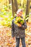 有秋叶的愉快的逗人喜爱的男孩在公园 免版税图库摄影