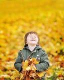 有秋叶的愉快的逗人喜爱的男孩在公园- copyspace 库存照片