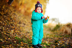 有秋叶的愉快的逗人喜爱的男孩在公园- copyspace 免版税库存图片