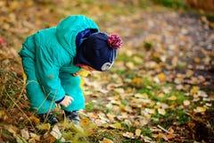 有秋叶的愉快的逗人喜爱的男孩在公园- copyspace 免版税库存照片