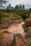 有秋叶的桥梁 图库摄影
