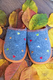 有秋叶的温暖的舒适羊毛拖鞋 库存照片