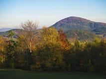 有秋天五颜六色的森林的草甸和树和小山和蓝色s 图库摄影